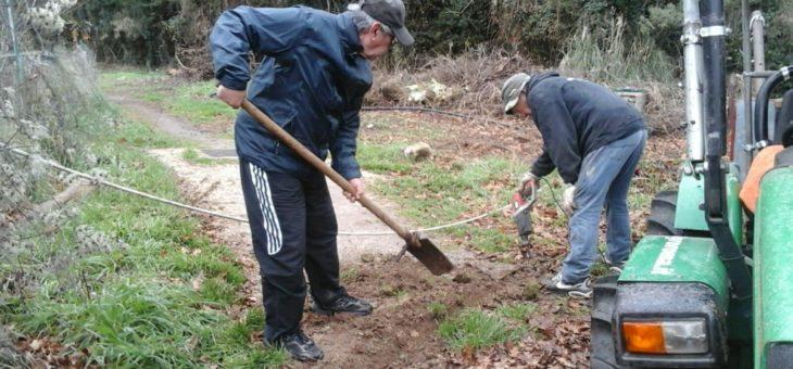 Lavori per l'irrigazione degli orti