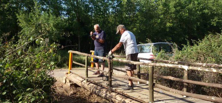 Volontari del Comitato: Nuovo ponte di legno sul fosso (zona eucalipti)